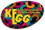 KEGG Drug logo