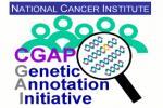 Quantitative PCR Primer Database logo