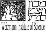 Sergio Lombroso Italian-Israeli Program logo